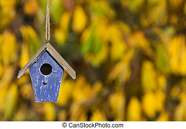 A bird house or bird box in Autumn or Fall sunshine with natural golden leaves background