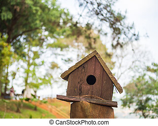 Bird house man made in the park