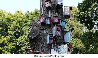 bird house nest box - colorful bird nest boxes house hang on...