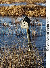 Bird House on a fence post