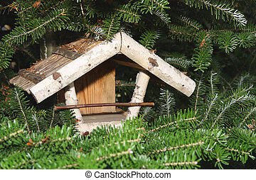 Bird house on the pine tree