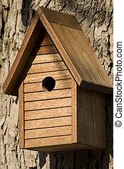 Bird House on Tree