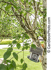 Bird house suspended on tree - Small bird house suspended on...