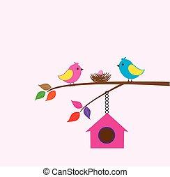Bird House - tor bird family