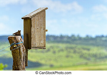 Bird house wooden box in summer time