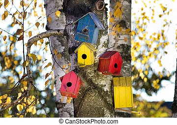 Bird houses on the tree - Colorful bird houses on tree trunk...