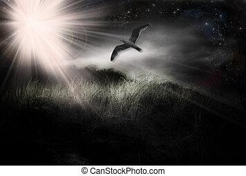 Bird in Flight grunge abstract landscape