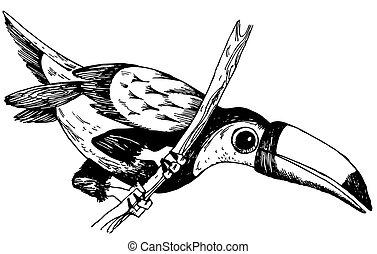 Bird Keel-billed Toucan on the branch