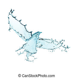 Bird made of water splashes isolated on white