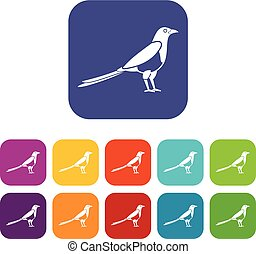 Bird magpie icons set vector illustration in flat style in...
