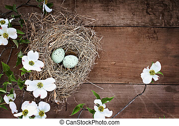 Bird Nest and Eggs with White Flowering Dogwood Blossoms