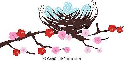 bird nest - vector robin eggs in bird nest