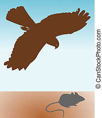 Bird of prey hunting a mouse