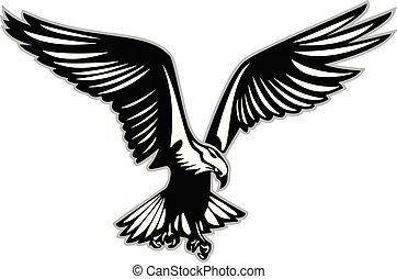 Bird of prey in flight vector illustration - Large bird of...