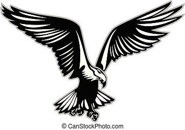 Bird of prey in flight vector illustration