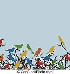 Bird on a tree7