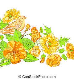 Bird on blossoming sakura brunch.