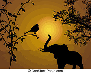Bird on branch and elephant