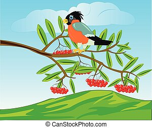 Bird on branch of rowanberry and mountains on back plan -...
