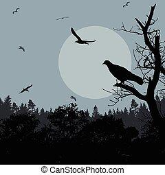 Bird on branch on blue evening