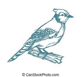 bird on branch sketch blue vintage