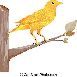 bird on branch vector design
