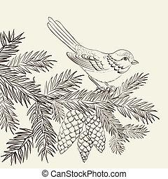 Bird on christmas fir and pinecone. Vector illustration.