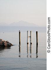 Bird on Pier on Lake Geneva, Lausanne, Switzerland