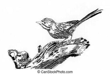 bird on tree sketch