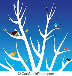 bird on white branch