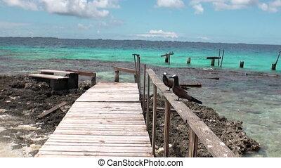 Bird on wooden pier near boat in ocean.