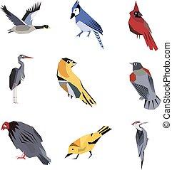 Bird pattern flat illustration on white