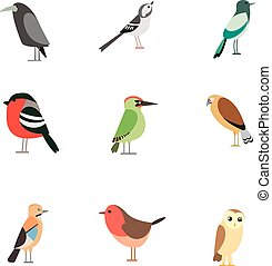 Bird pattern flat illustration on white