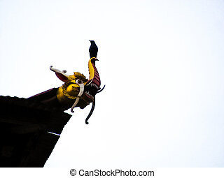 bird perched on a dragon shaped waterspout