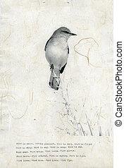 Bird Poem