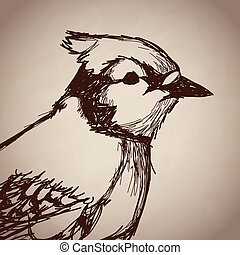 bird portrait forest hand drawing vintage
