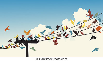 Bird roost - Vector silhouettes of colorful birds roosting...