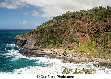 Bird sanctuary at Kilauea Lighthouse - Cliffs housing bird ...