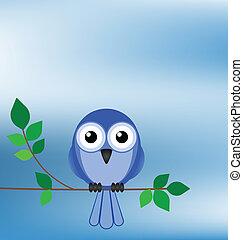 Bird sat on a tree branch against a blue sky