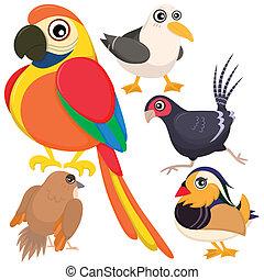 bird set-07