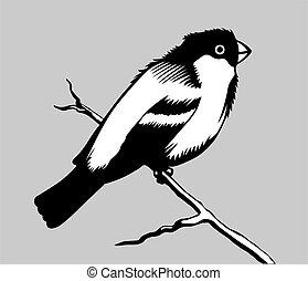 bird silhouette on gray background