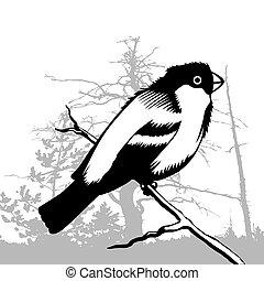 bird silhouette on wood background, vector illustration