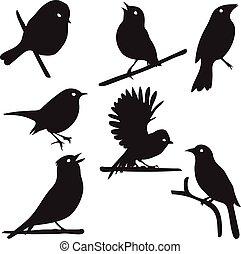 Bird Silhouettes, bird on branch, vector collection,...