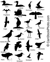 Bird Silhouettes Logos - Bird Silhouettes or Logos 23 images...