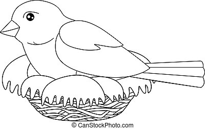 Bird sits on a nest - vector linear picture for coloring. A small bird - a sparrow hatches eggs in a cozy nest. Outline. Hand drawing.