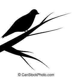 bird sitting on a tree silhouette