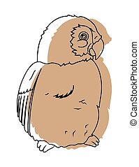 Bird Sketching