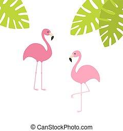 bird., tropicale, cartone animato, palma, due, rosa, fondo., verde, appartamento, animale, character., esotico, design., carino, fenicottero, decorazione, bianco, element., collection., set., isolated., leaves.