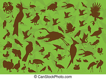 Bird vector background for poster