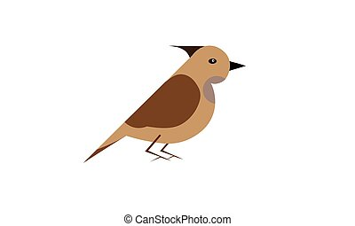Bird. Vector image. Isolated on a white background